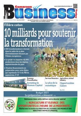 Cameroon Business - 22/07/2020
