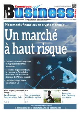Cameroon Business - 04/11/2020