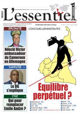 L'essentiel du Cameroun - 03/11/2020